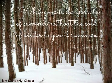 Quote: What good is the warmth of summer, without the cold of winter …